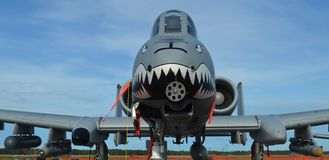 A-10 II/Warthog piorun Obrazy Stock
