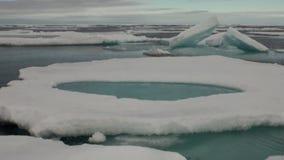 Iicebergs que flota en el mar alrededor de Groenlandia almacen de metraje de vídeo
