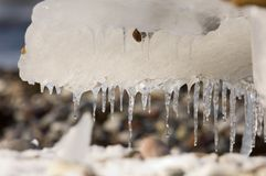 Iicicles Royalty Free Stock Image