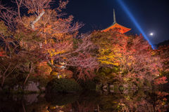 Iight up laser show at kiyomizu dera temple Royalty Free Stock Photos