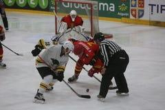 2017 IIHF LODOWEGO hokeja ŚWIATOWY mistrzostwo - Australia vs Belgia Zdjęcie Stock
