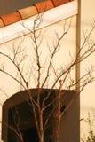 iii architektoniczne linii Zdjęcie Stock