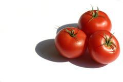iii pomidorów Obraz Royalty Free