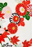 iii projektu kimono Zdjęcia Royalty Free