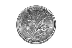 iisolated的1枚中国人焦硬币 免版税库存图片