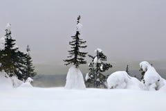 Iivaara berg i Finland Arkivfoto
