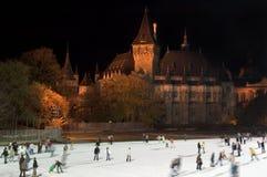 Ijs dat in Boedapest schaatst Stock Fotografie