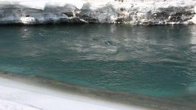 Ijs die op de bergrivier smelten in de vroege lente, Altai, Rusland stock video