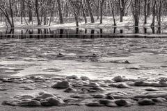 Ijs en sneeuw in de Grote Rivier royalty-vrije stock foto