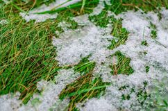 Ijs en sneeuw die op groen gras smelten Stock Fotografie
