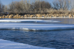 Ijs op Platte van het Zuiden Rivier, Colorado Stock Foto