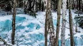 ijs op rockface Stock Fotografie
