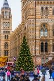 Ijsbaan en Kerstboom bij Nationaal Geschiedenismuseum in Londen royalty-vrije stock foto