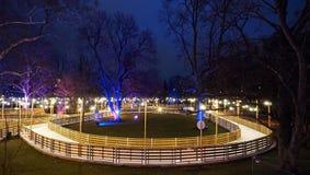 Ijsbaan in het park Royalty-vrije Stock Afbeelding