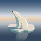 Ijsbeer op ijs stock fotografie