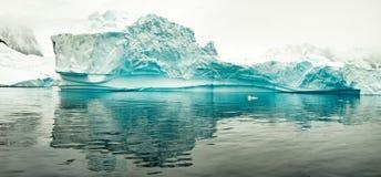 Ijsberg in Antartica Stock Foto's