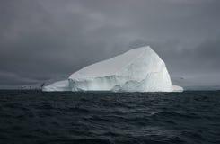 Ijsberg dichtbij Groenland Royalty-vrije Stock Foto