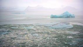 Ijsberg en ijs van gletsjer in noordpoolaardlandschap op IJsland stock footage