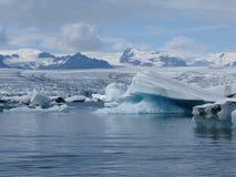 Ijsbergen en gletsjer Royalty-vrije Stock Foto's
