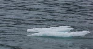 Ijsbergen op een ruwe overzees Stock Foto's
