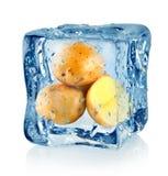 Ijsblokje en aardappel stock foto