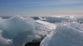 Ijsbrokken van de ijzige lagune van Jokulsarlon stock footage