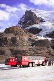 Ijsbussen stock foto