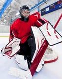 Ijshockey goalie stock foto