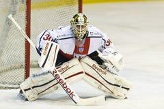 Ijshockey Goalie stock afbeeldingen