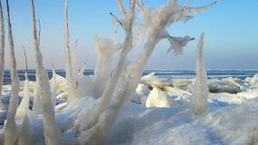 Ijsijskegels dichtbij meer, Litouwen Stock Afbeeldingen
