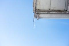 ijsijskegels op de daken van huizen Royalty-vrije Stock Fotografie