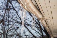 ijsijskegels op de daken van huizen Royalty-vrije Stock Afbeeldingen