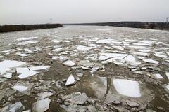 Ijsijsschol op de rivier in de winter, awy PuÅ ', Polen, 02 2012 Stock Afbeeldingen
