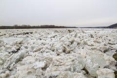 Ijsijsschol op de rivier in de winter, awy PuÅ ', Polen, 02 2012 Stock Foto's