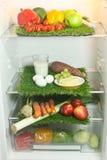 Ijskast een Voedsel Stock Foto