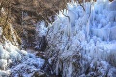 ijskegel Stock Afbeelding
