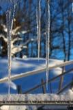 ijskegel Royalty-vrije Stock Foto's