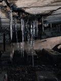 ijskegel Stock Foto