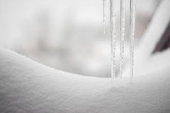 Ijskegels in de sneeuw worden bevroren die Stock Fotografie