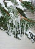 Ijskegels op sneeuwspartak royalty-vrije stock foto's
