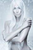 Ijskoningin - de ijzige achtergrond, ijzig, bevroren Stock Fotografie