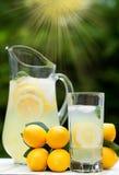 Ijskoude Limonade met Munt Stock Foto's