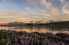 IJsland Royalty-vrije Stock Afbeeldingen