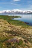 IJsland landspace met fjord en berg Royalty-vrije Stock Foto