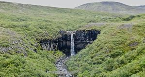 IJsland, Skaftafell-aardreserve en Svartifoss-waterval royalty-vrije stock foto's