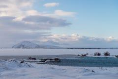 Ijslands de winterlandschap onder Myvatn-meer Royalty-vrije Stock Fotografie