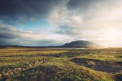 Ijslands die Landschap door Zonlicht wordt verlicht Royalty-vrije Stock Afbeeldingen