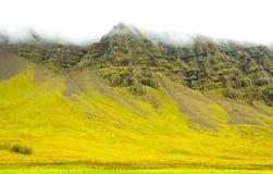 Ijslands mos en vulkanische rotsenberg/IJsland Royalty-vrije Stock Afbeeldingen