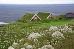 Ijslands traditioneel die huis met gras, in zuidelijk IJsland wordt behandeld royalty-vrije stock afbeeldingen