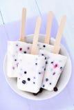 Ijslollys van yoghurt en bessen Stock Fotografie